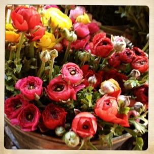photoflowers